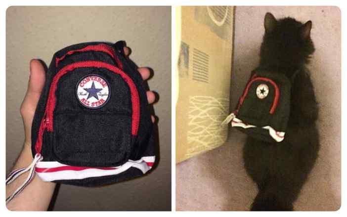 ¿Es una mochila o no es una mochila? Radie había preguntado que tamaño tenía.