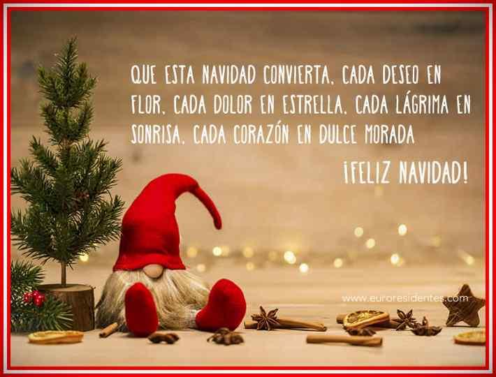 Felicitaciones de Navidad y Año Nuevo 2020 - 2021 14