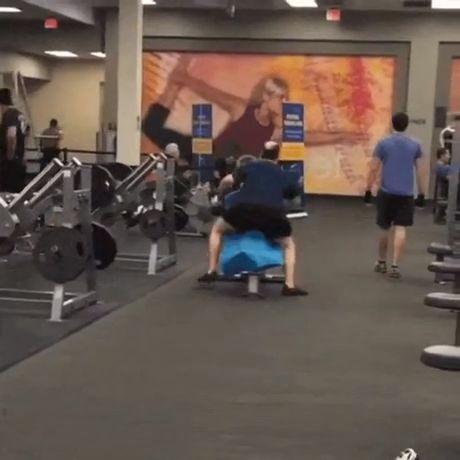 Hoy en extraños animales de gimnasio…