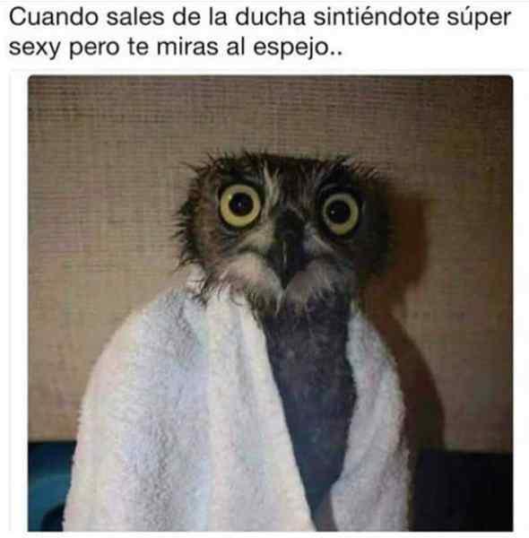 memes graciosos 01 3 - Memesdump #7, memes de risa para whatsapp
