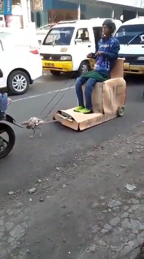 Nuevo coche eléctrico