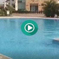 Como no debes saltar en una piscina. Un fail muy doloroso.