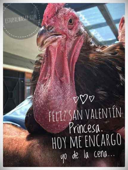 Felicitaciones de San Valentín, para enviar por Whatsapp. 15