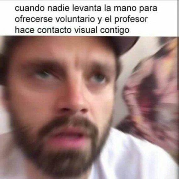 Divertida exposición de memes. 6