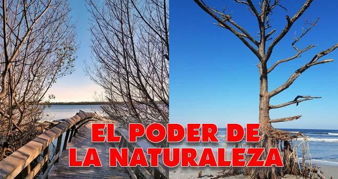 Desastres naturales, el poder de la naturaleza. 3