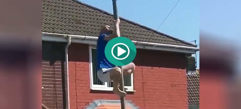 Se sube a una farola para hacer poledance y mira lo que ocurre. 7