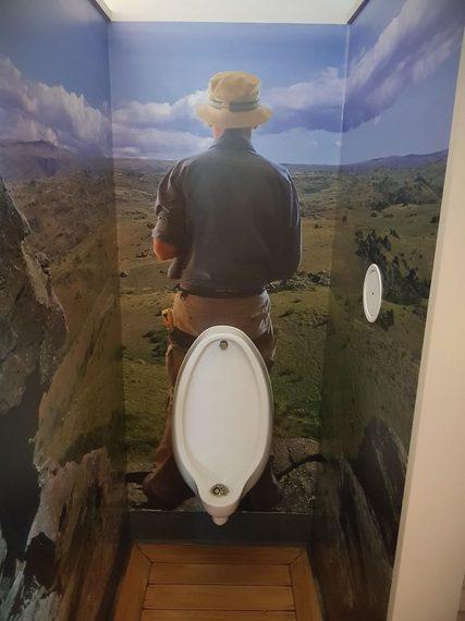 Te vas a asombrar con estos cuartos de baño tan extraños. 7