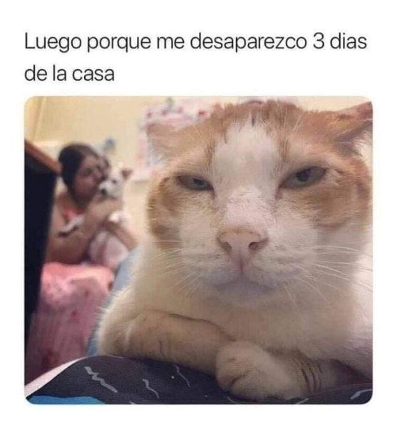 10 Memes en Español Graciosos. 2