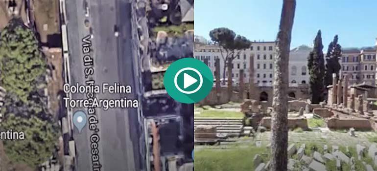 Curiosidades en Google Map. El Gato Argentino. 1