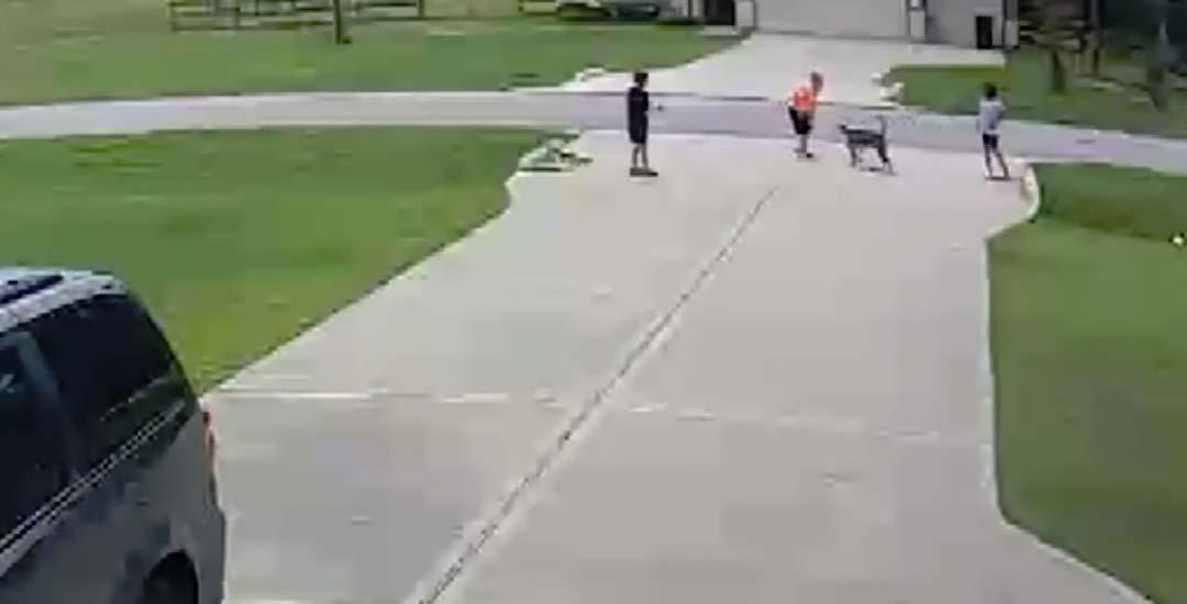 Un héroe anónimo salva a un niño atacado por un Pitbull.