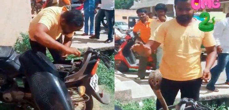 Sacando una serpiente Cobra del interior de una moto. 1