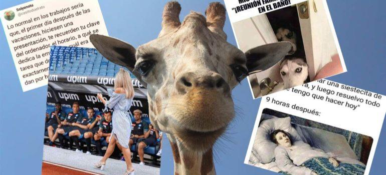 Disfruta de estas 20 fotos y memes tan chistosos y divertidos. 5