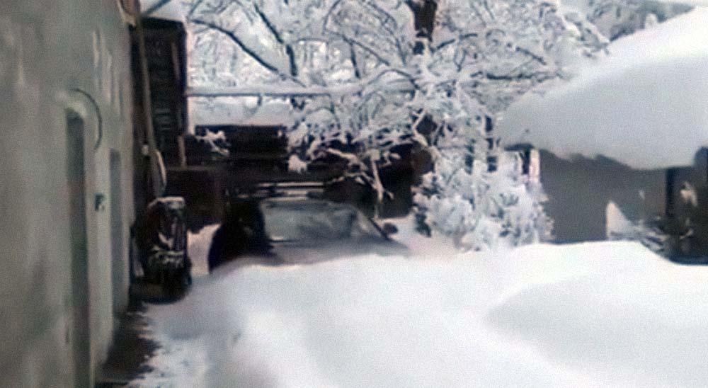 Atravesando la nieve con su coche