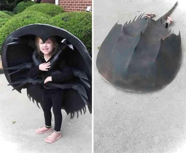 14 Niños que han triunfado en Halloween con su disfraz 6