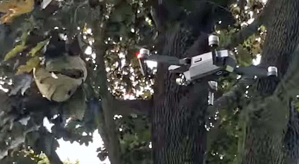 Usando un Drone para destruir un nido de abejas 3