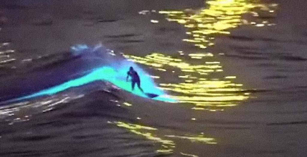 Surfista surca las olas con un impresionante efecto causado por la bioluminiscencia 2