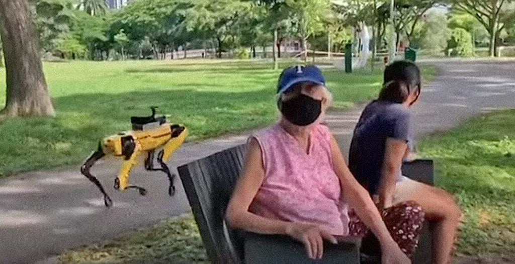 En Singapur usan un perro robot para vigilar la distancia social 6