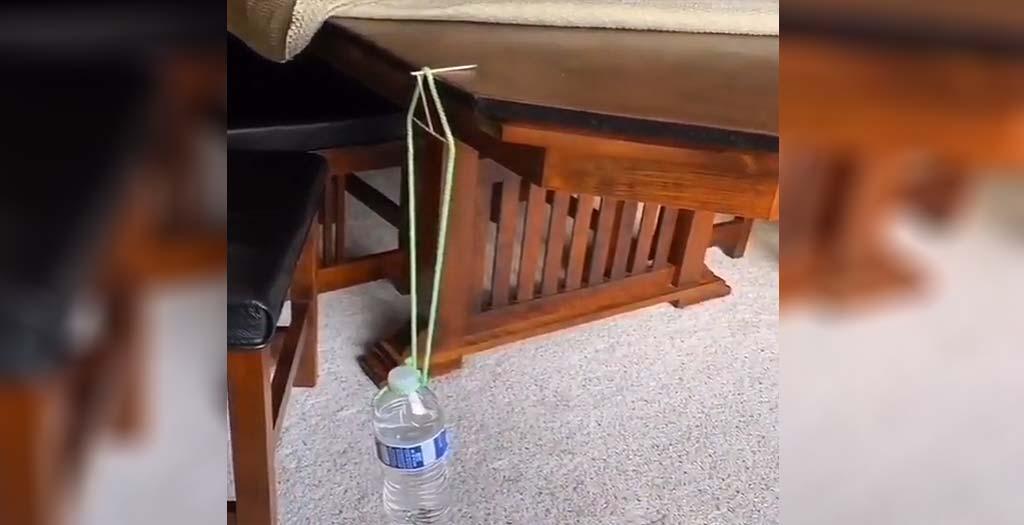 ¿Es posible sujetar una botella de agua de un palillo? 2