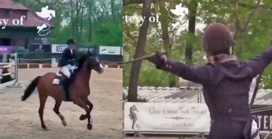 Creo que el caballo esta cansado de su trabajo 1