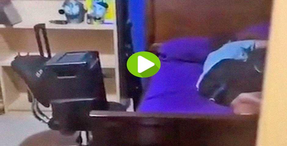 Sus amigos le colocan un micrófono en el culo mientras duerme 6